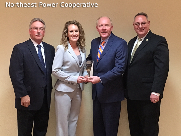 Northeast Power Cooperative Received IADG Impact Award