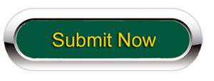 Submit button to access Partners in Progress Grant Form