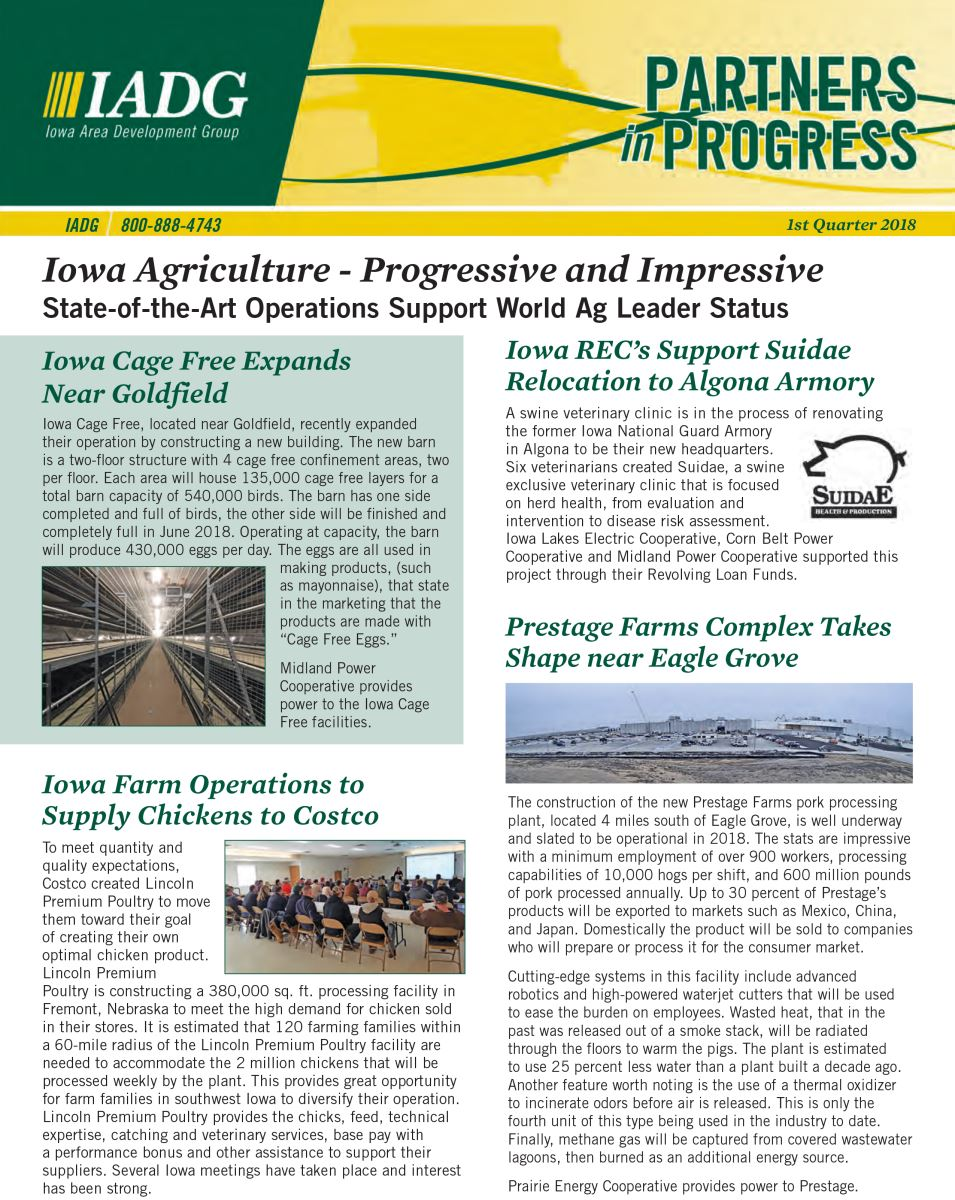 Image of page 1 of the IADG Newsletter - 1st Quarter 2018